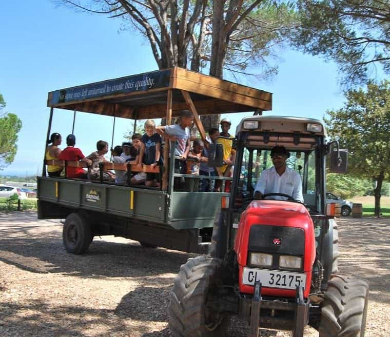 diary 5 march eikendal s weintaufe harvest carnival eikendal wine